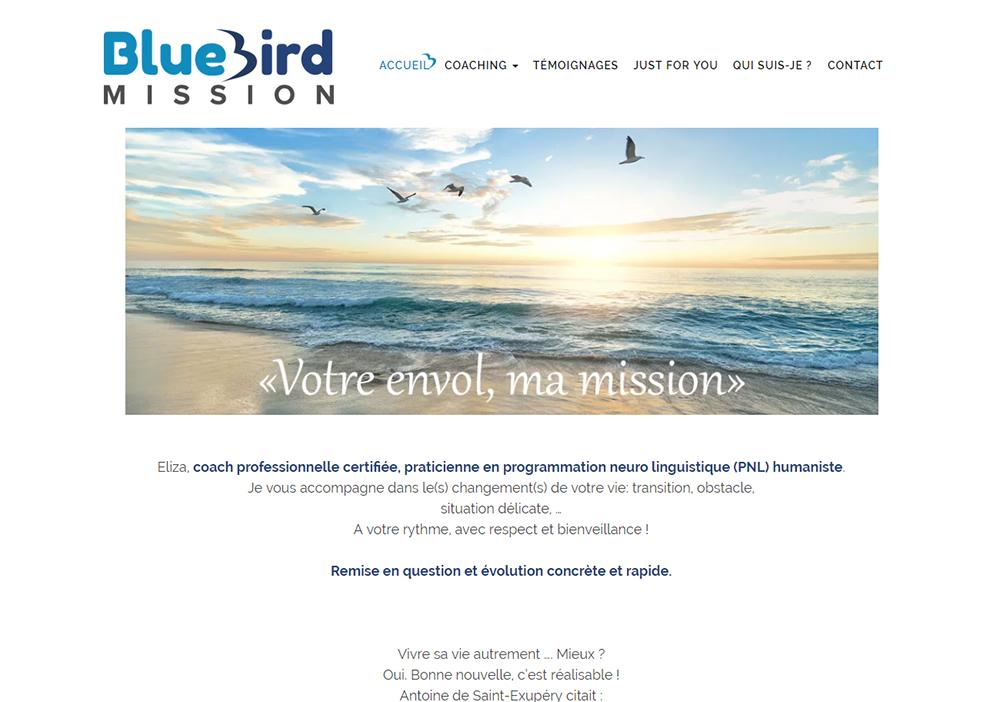 Bluebird Mission